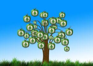 【サラリーマン節税対策】まだ税金払ってるの?iDeCoで最強節税運用の基本を徹底解説。