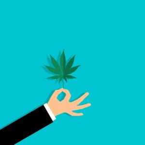 【大麻は儲かる!?】大麻ビジネスの将来性と投資可能な大麻関連株まとめ